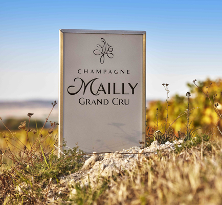 Mailly Champagne Grand Cru